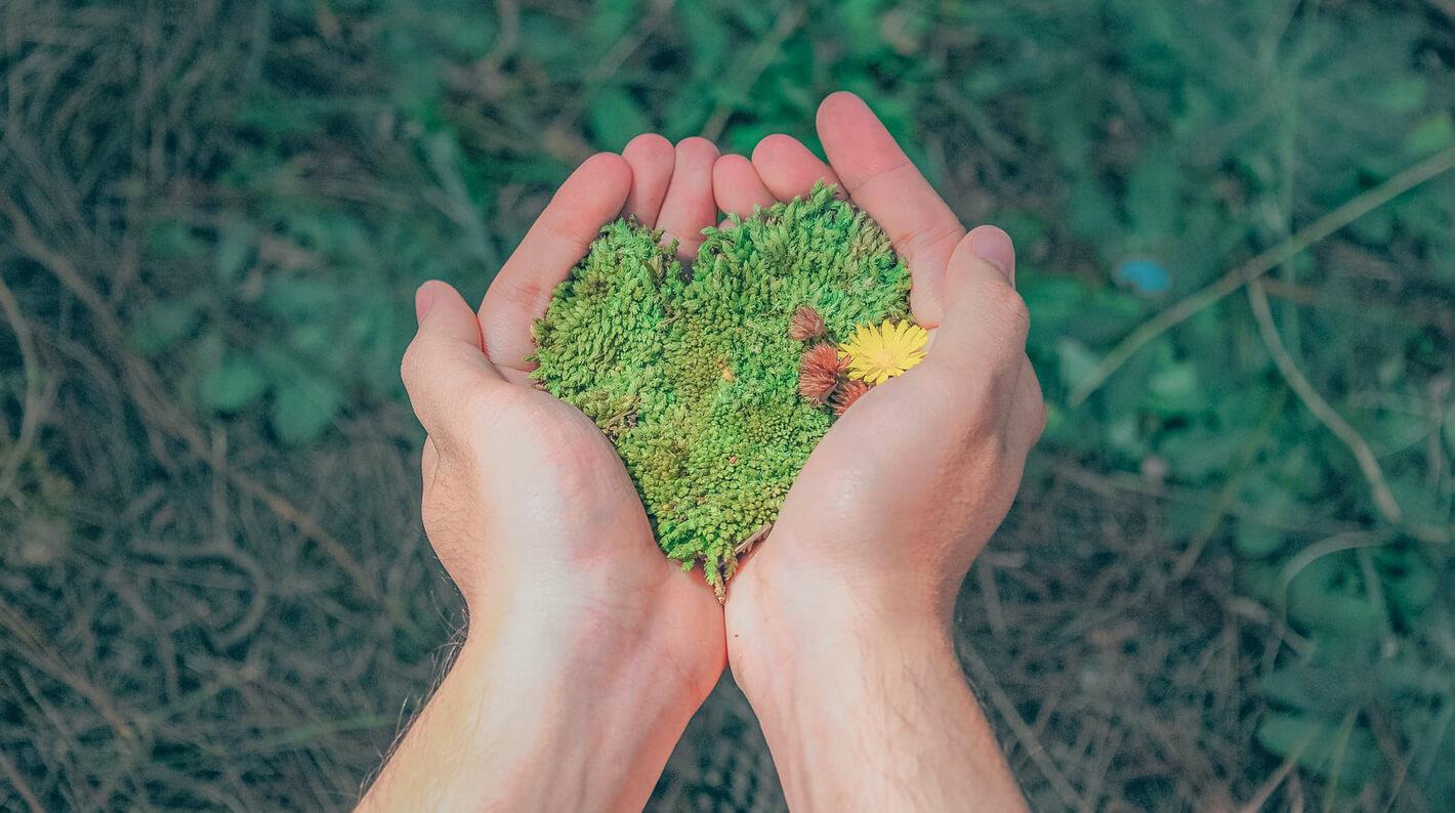 cuidado medioambiente