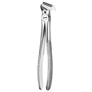 8 LOWER PREMOLAR FORCEPS Img: 201807031