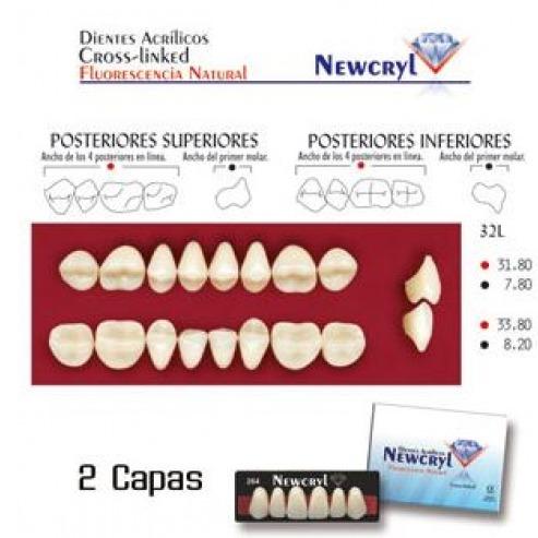 NEWCRYL-VITA 32L Upper A2 Teeth Img: 201807031
