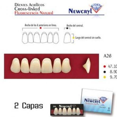 NEWCRYL-VITA A26 UP A3.5 TEETH Img: 201807031