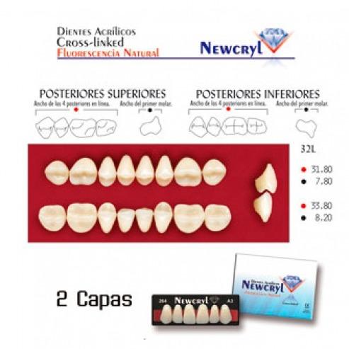 NEWCRYL-VITA 32L Lower A3 Teeth Img: 201807031