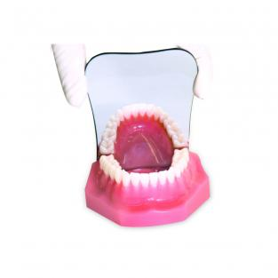 Adult Occlusal Crystal Photographic Mirror. Img: 201807031