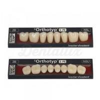 SR ORTHOTYP S PE posterior superior N3 teeth - 1A Img: 201905181