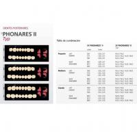 SR PHONARES II post inf NL5 A1 Img: 201807031