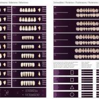 PHONARES TOOTH FURNITURE 4 drawers Img: 201807031