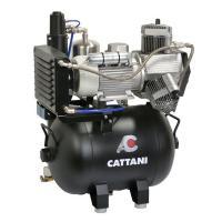 AC 310: Compresor de 3 Cilindros para Fresadoras Cad Cam Img: 202105221