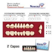 dientes newcryl 30l lo a1