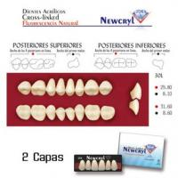 dientes newcryl 30l up a1