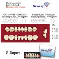 dientes newcryl 30m up a1