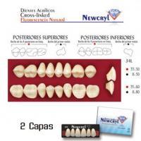 dientes newcryl 34l up c2