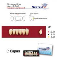 dientes newcryl 3d up