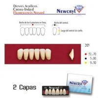 dientes newcryl lo a2
