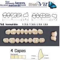dientes steinvit n4 up