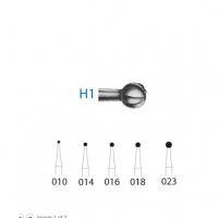 H1 tallo largo CA 014 Img: 201807031