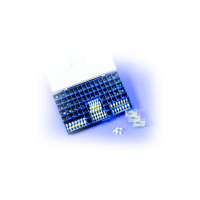 Coronas Preformadas Acetato (3u.)-A1 SDI Img: 201903231