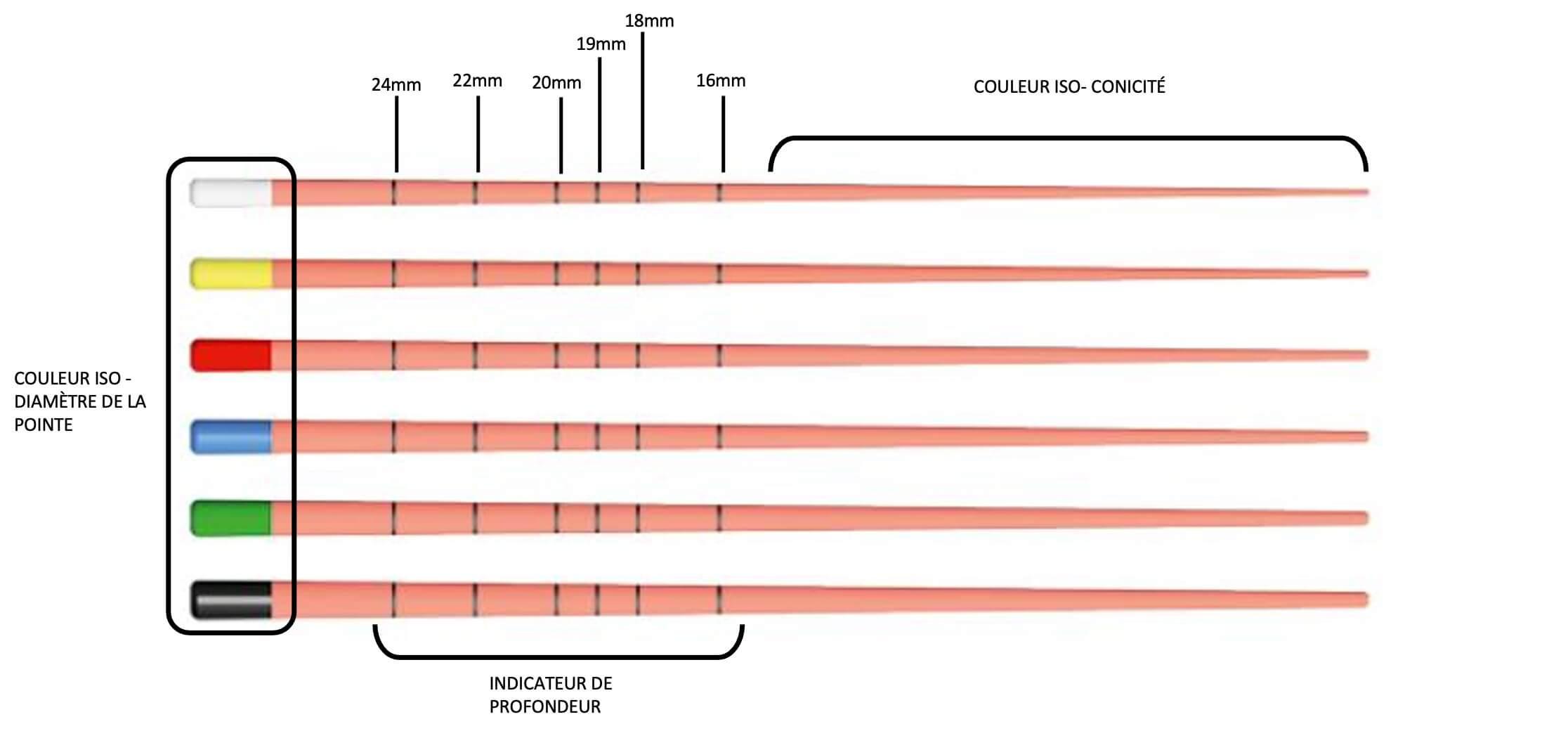Codification ISO gutta-percha