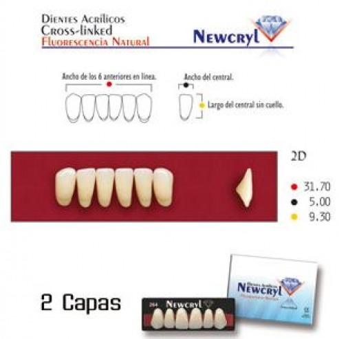 Dents NEWCRYL-VITA A2 2N  Img: 201807031