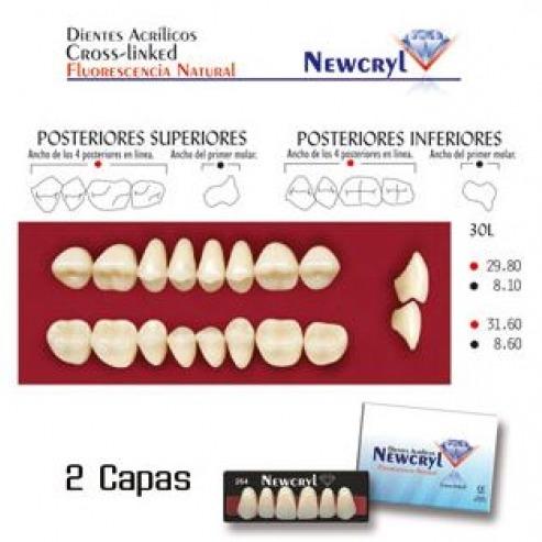 Dents NEWCRYL-VITA 30L UP A2  Img: 202008151