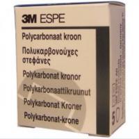 CROWNS polycarbonate ION 69 5 unités Img: 201807031