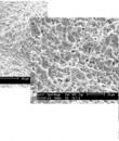 Img3: PLATE-FORME D'IMPLANT CONNEXION EXTERNE RÉGULIÈRE