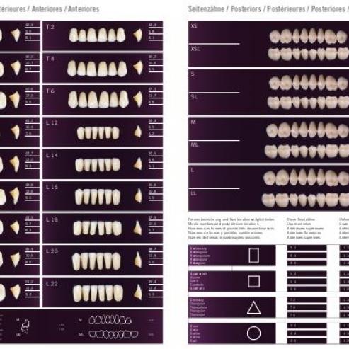 Denti anteriori superiori PREMIUM S4A1 Img: 201911021