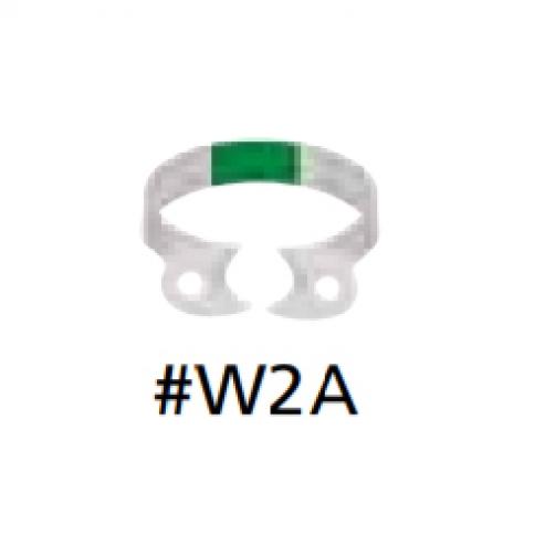 Morsetti Fiesta isolamento in colori W2A premolari (verde) Img: 201809011