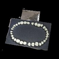 DENTI REPOSICION typodont frasaco AG3 Img: 201807031