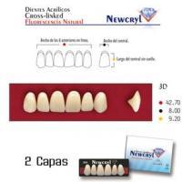 dientes newcryl 3n up