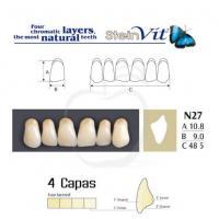 dientes steinvit n27 up