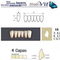 dientes steinvit L6 LO